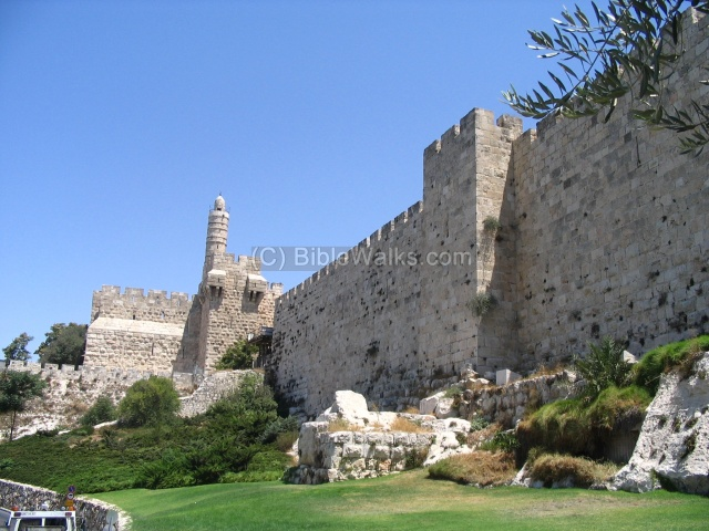 "The ""Tower of David"""